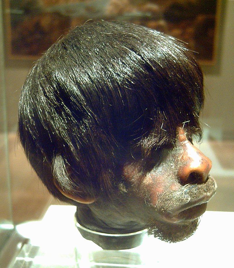 Tsantsa realizzata dagli Shuar, Museo delle Americhe, Madrid (via Wikimedia Commons [CC BY-SA 3.0])